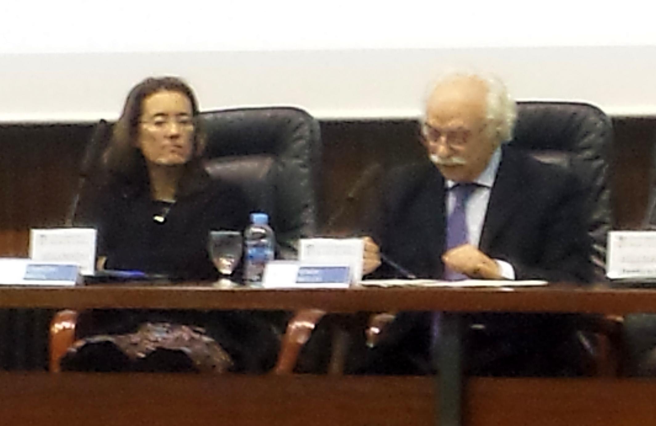 la Prof. Dra. Bolea Bardon (socia de la FICP) modera la ponencia del Prof. Dr. Sergio Moccia.