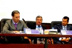 El Prof. Dr. Hortal Ibarra durante su ponencia. A la dcha., los Profs. Dres. Foffani y Lombana (moderador)