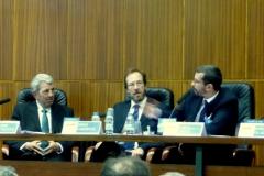 El Prof. Dr. Chiesa durante su ponencia. A su izq., los Profs. Dres. de Vicente Remesal y Cardenal Montraveta (moderador).