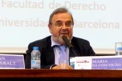 El Prof. Dr. Dr. h.c. mult. Luzón Peña durante la Clausura del I Congreso.