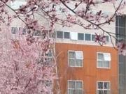 Facultad de Derecho de la Universidad de Vigo.