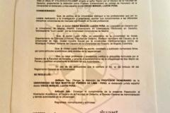 Resolución Prof. honorario Univ. San Martin de Porres