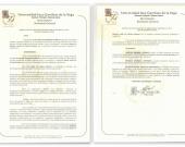 Resolución UIGV De Vicente